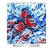 Bullfinches Shower Curtain by Zaira Dzhaubaeva