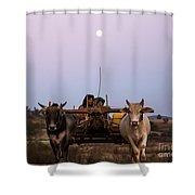 Bullock Cart Under Full Moon - Burma Shower Curtain