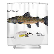 Bulltrout And Grey Ghost Fly Shower Curtain