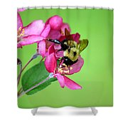 Buzz Time Shower Curtain