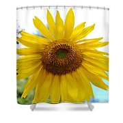Bumble Bee And Sunflower Shower Curtain