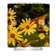 Bumble Bee On A Western Sunflower Shower Curtain