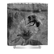 Bumble Bee Post Card 2 Bw Shower Curtain
