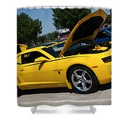 Bumble Bee Side View 7904 Shower Curtain