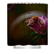 Bumble Bee Tattered Wings Art 3 Shower Curtain