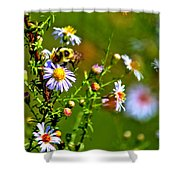 Bumblebee Delight Shower Curtain