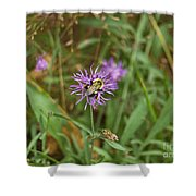 Bumblebee On Flower Shower Curtain