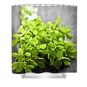 Bunch Of Fresh Oregano Shower Curtain