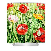 Bunch Of Poppies II Shower Curtain
