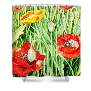 Bunch Of Poppies IIi Shower Curtain
