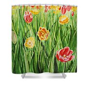 Bunch Of Tulips II Shower Curtain