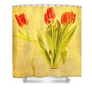 Bunch Of Tulips Shower Curtain