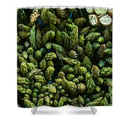 Bunches Of Asparagus On Display At The Farmers Market Shower Curtain