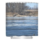 Bunches Of Eagles Shower Curtain