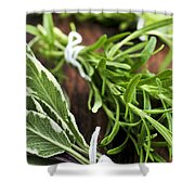 Bunches Of Fresh Herbs Shower Curtain