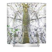 Burden Center Spirit Tree Shower Curtain