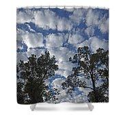 Burden Sky Shower Curtain