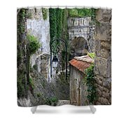 Burgundy Alley  Shower Curtain
