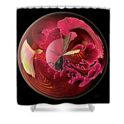 Burgundy Orchids In A Glass Globe Shower Curtain