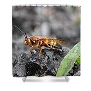 Burn Pile Bee Shower Curtain