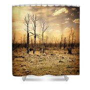 Burned Out Forest Shower Curtain