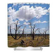 Burned Trees On Colorado Plateau Shower Curtain