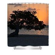 Burning Beach Sunset Shower Curtain