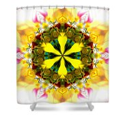 Burning Empathy Shower Curtain