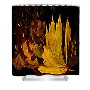 Burning Fall Shower Curtain