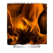 Burning Holly Shower Curtain