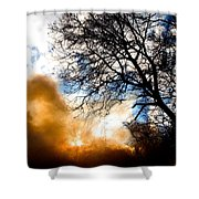 Burning Olive Tree Cuttings Shower Curtain