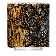 Burnt Beetle Maze  #9991 Shower Curtain