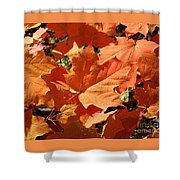 Burnt Orange Shower Curtain