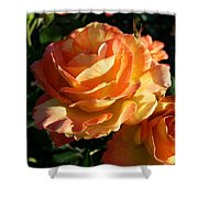 Burnt Rose Shower Curtain