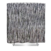 Burnt Trees Abstract Shower Curtain