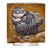 Burrowing Owl Portrait Shower Curtain