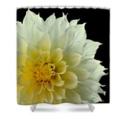 Burst Of Life Shower Curtain