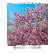 Bursting With Blossoms With A Hint Of Green Shower Curtain