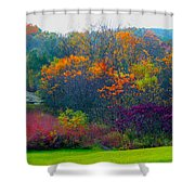 Bursting With Color 1 Shower Curtain