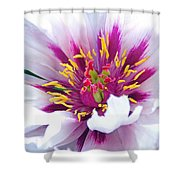 Bursting With Life Shower Curtain