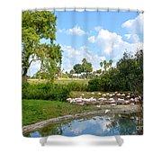 Busch Gardens Savannah Shower Curtain