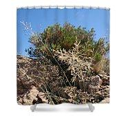 Bush Shower Curtain