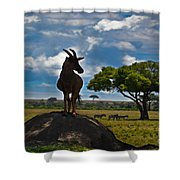 Bushbuck Guard Of The Mound   Shower Curtain