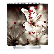 Business Is Blooming Shower Curtain