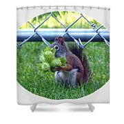 Busted Shower Curtain