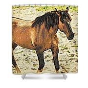 Buster Bronc Shower Curtain