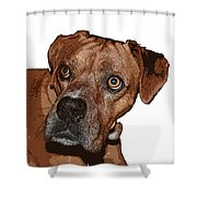 Buster Brown The Boxer Shower Curtain by Sandra Clark