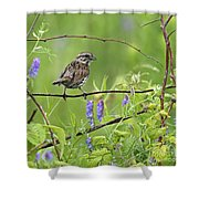 Busy Busy... Shower Curtain