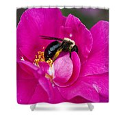 Busy Pink IIi Shower Curtain