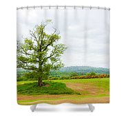 But Only God Can Make A Tree Shower Curtain by Semmick Photo